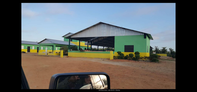 Finca 1600 tas bananos org produccion12