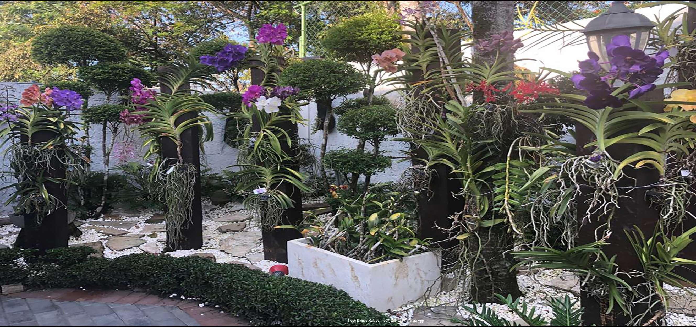 16-Precioso Jardin 2