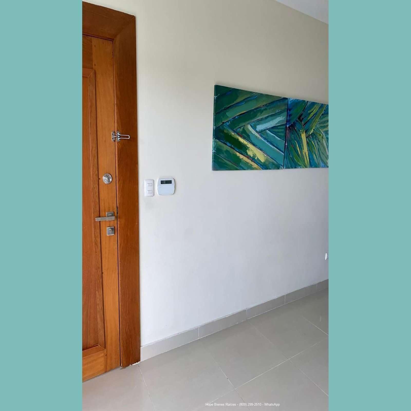 Puerta entrada electrónica